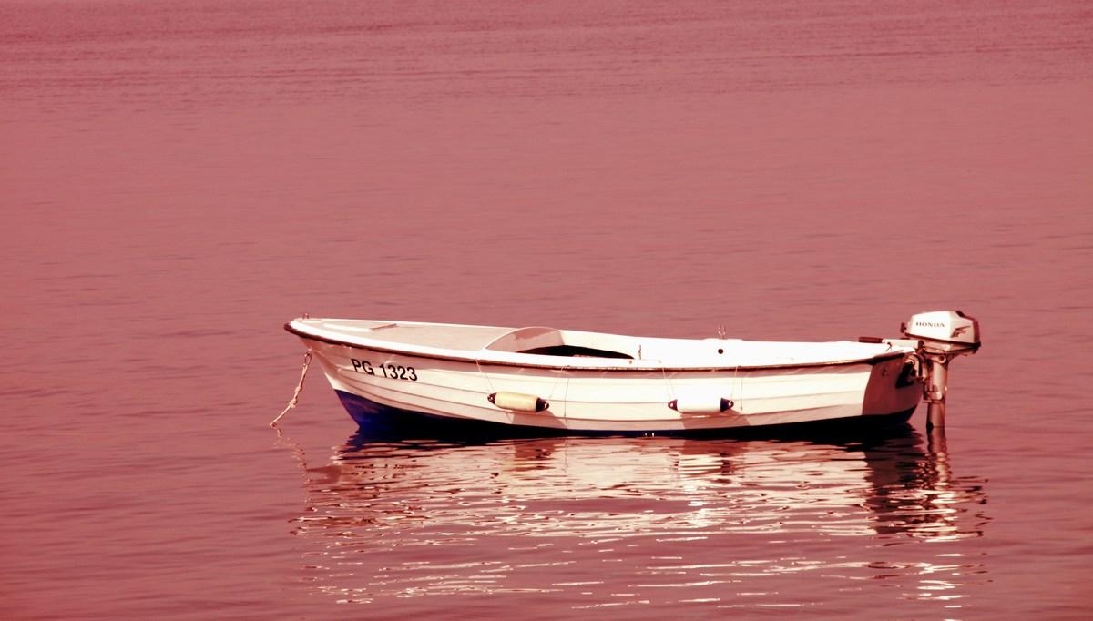 čolnič