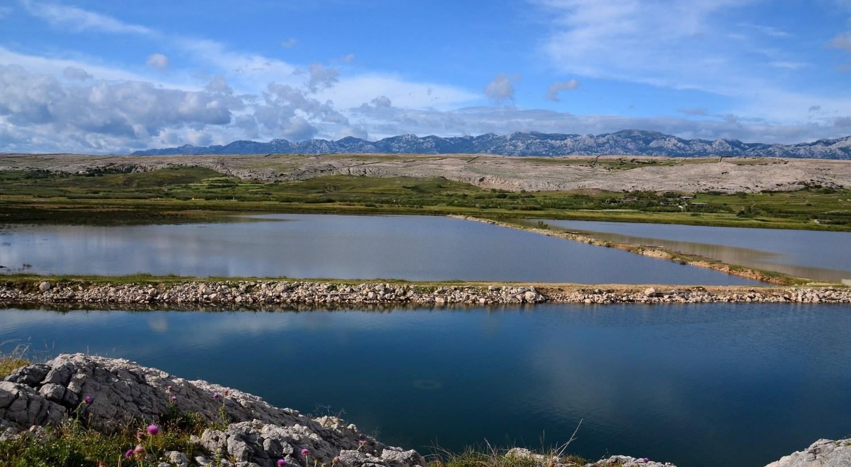 Bazene »Soline Pag«, ki se razprostirajo na približno 2,5 milijonov kvadratnih metrov, bodo kmalu uredili za oglede in na ta način bodo postali del turistične ponudbe otoka Paga.