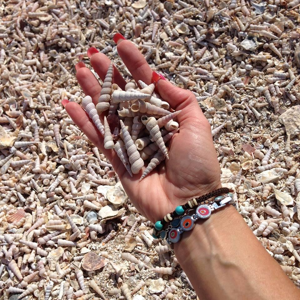 Školjke, material za ustvarjanje