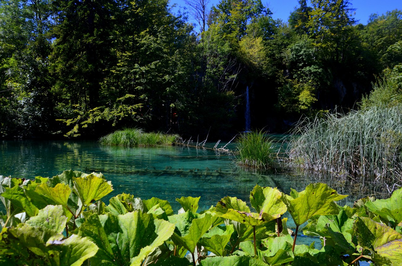 Na Plitvicah je tudi izvir reke Korane.