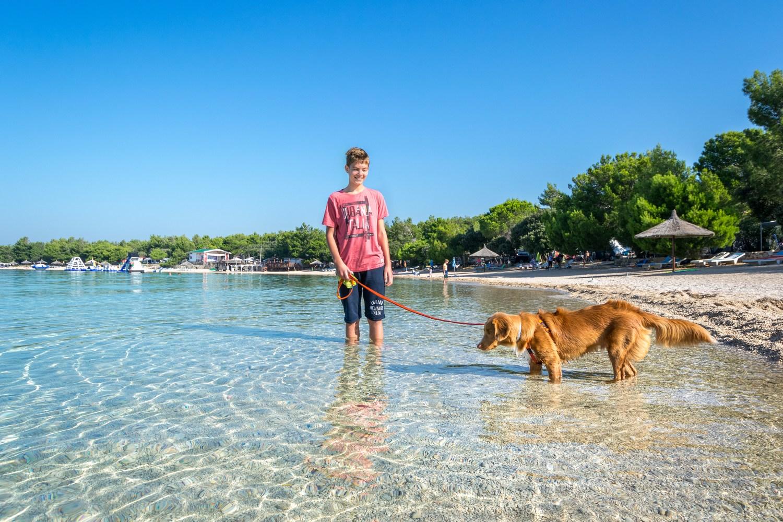 V kampu vas bo pričakalo šest urejenih prodnatih in peščenih plaž, od katerih sta dve plaži za pse.