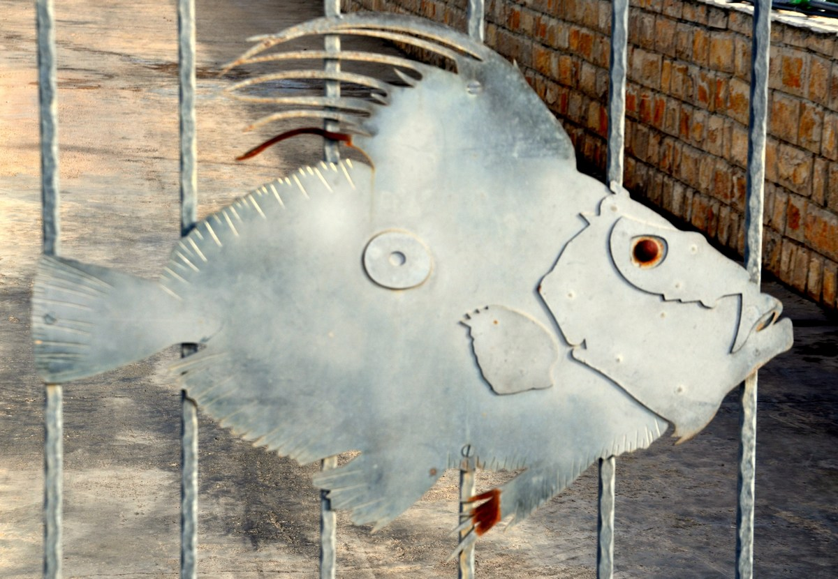 Riba na ograji