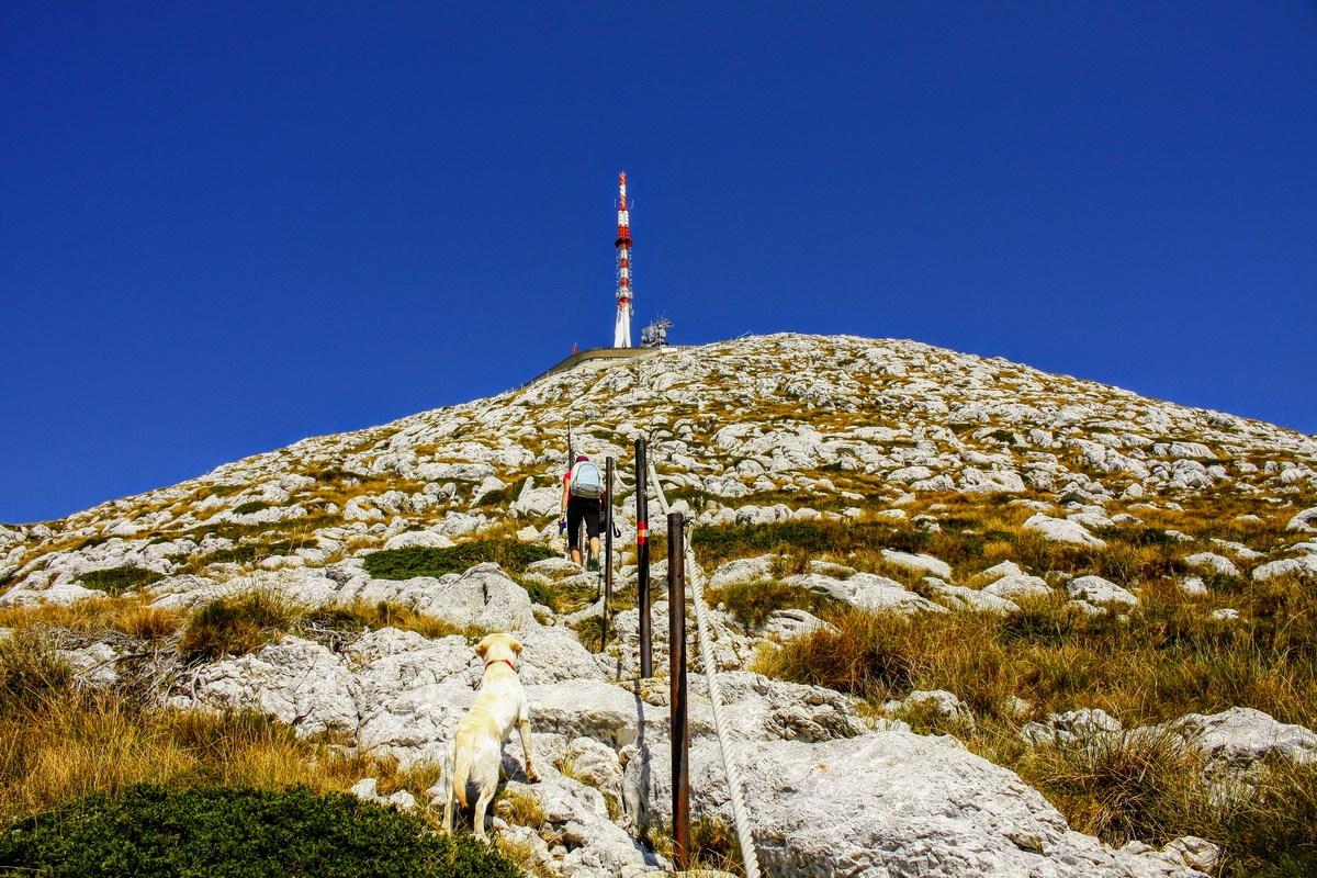 Zadnji višinske metre lahko naredimo peš. In smo jih. Saj smo Slovenci.