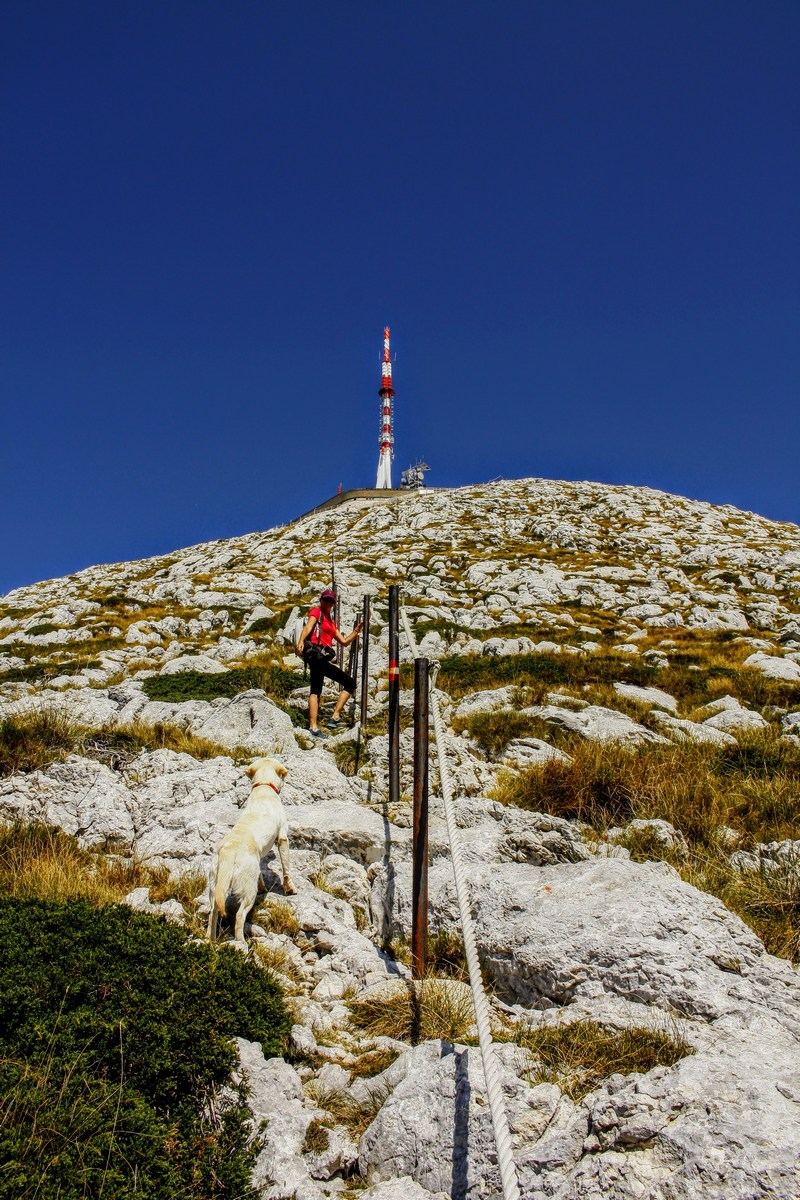Dve punci naskakujeta vrh.
