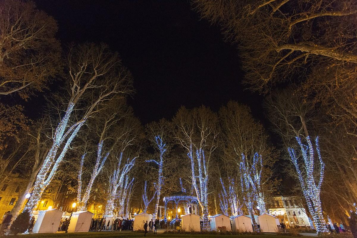 Osvetljena drevesa. Foto M. Vrdoljak