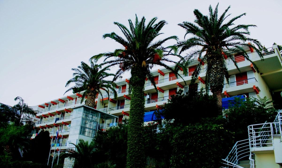 Palme in hotel