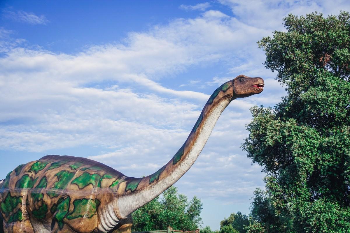 Dinozaver