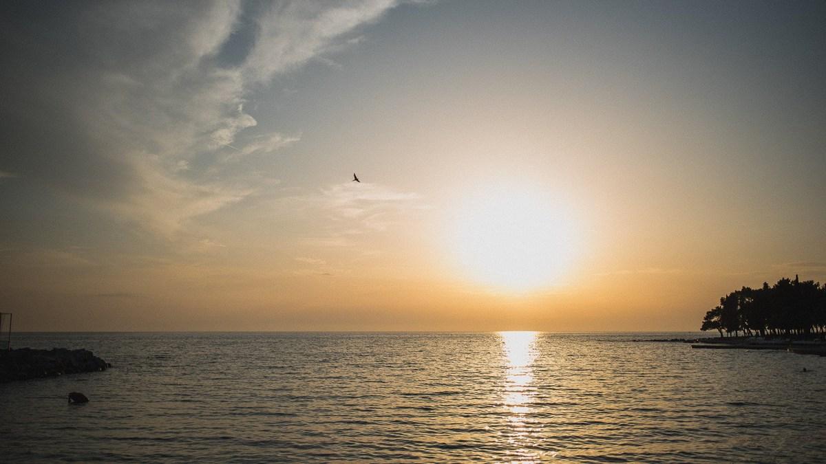 Umag, morje