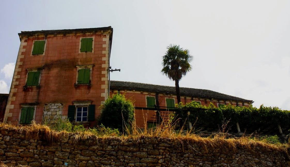Dvorec in palma