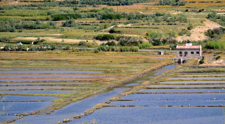 Solinarstvo predstavlja pomemben del paške dediščine in ravno zato so se domačini odločili atraktivne bazene soli postaviti v funkcijo turizma.