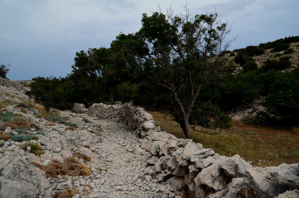 Lepa kamnita pot se zložno vzpenja.