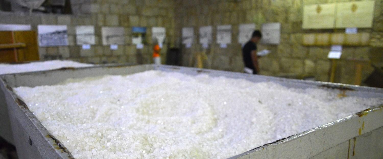 Povprečen slovenski prebivalec zaužije tudi do 12g soli na dan. To lahko opazimo že z odstotki prebivalcev s prekomerno telesno težo.