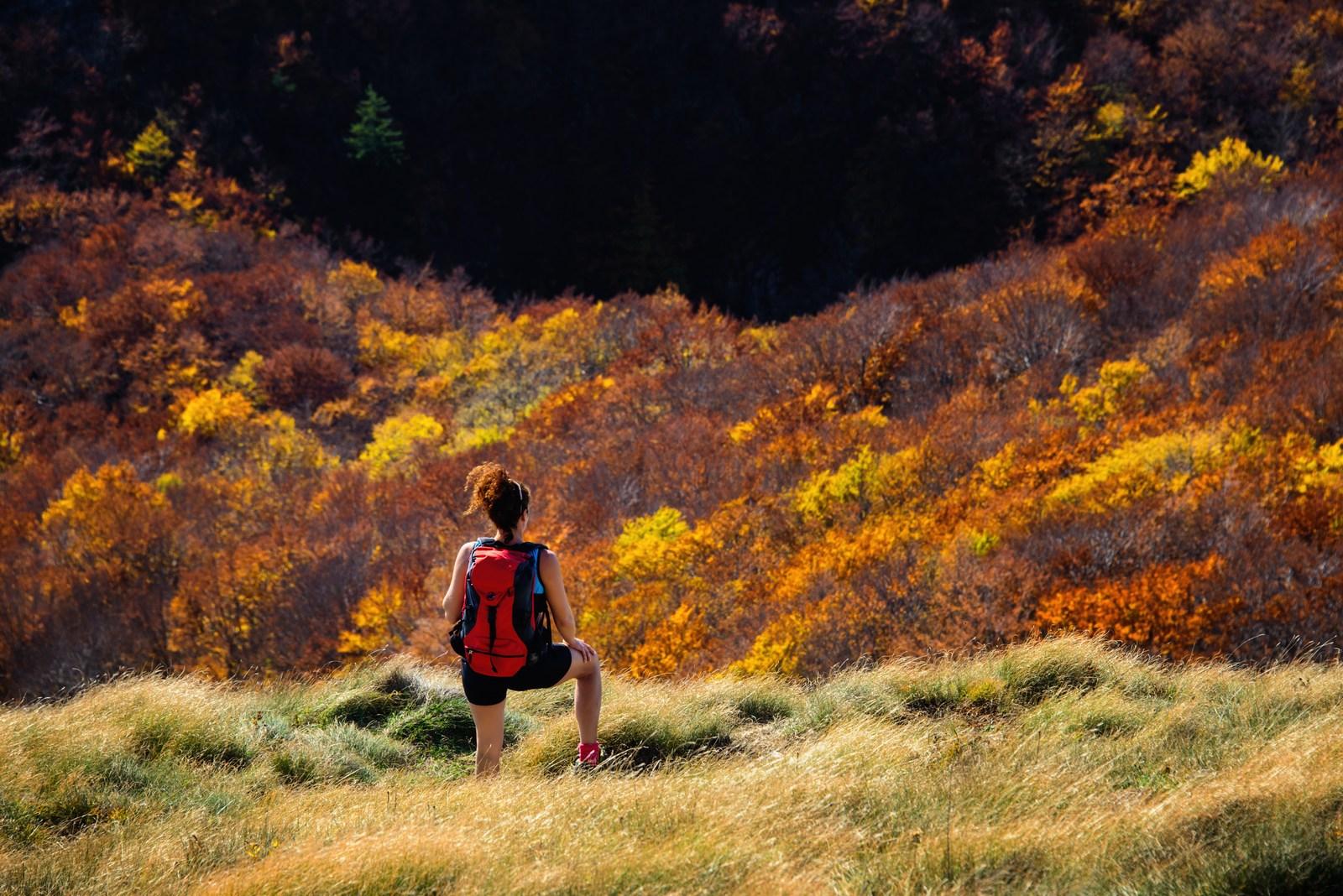 Na področju Velebita ležita dva narodna parka: Severni Velebit in Paklenica. Foto: HTZ in Aleksandar Gospić.