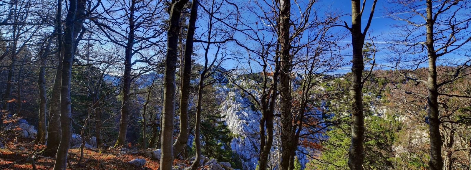 Najvišji vrhovi Velebita so: Vaganjski vrh (1758 mnm), Babin vrh (1746 mnm), Segestin, (1725 mnm), Malovan (1708 mnm). Skupno več kot 130 vrhov je višjih od 1370 metrov nadmorske višine. Foto: HTZ in Dražen Stojčić.