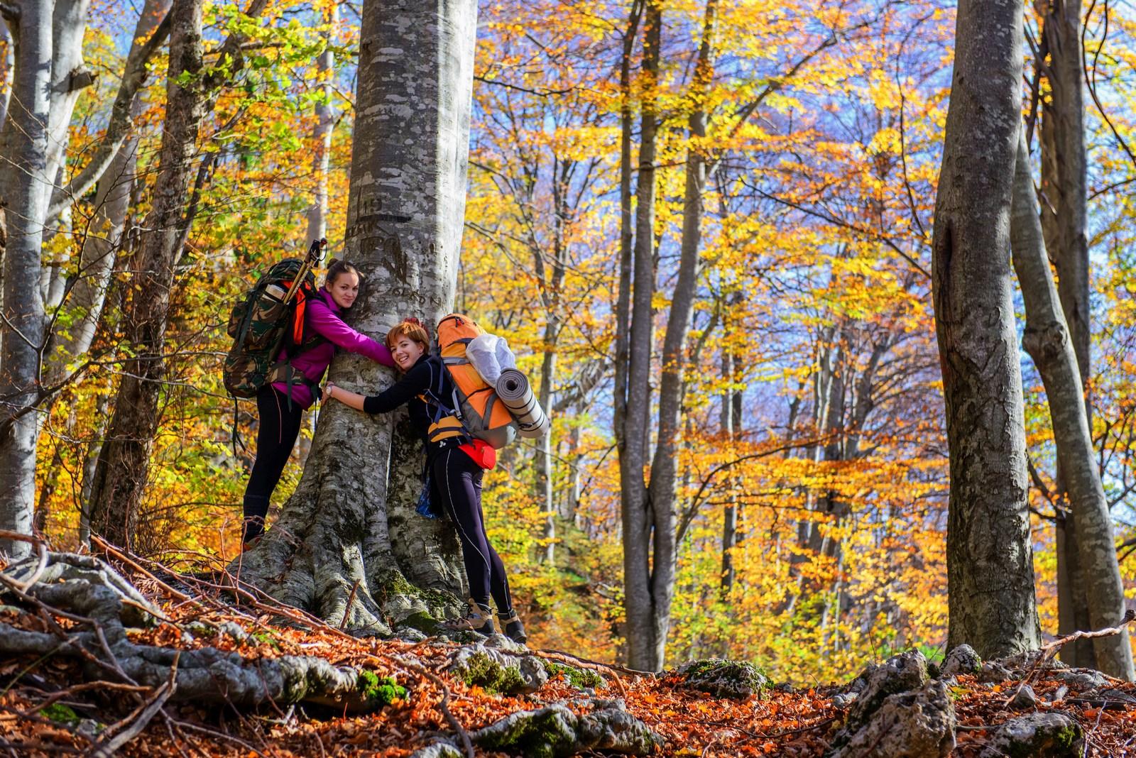 Velebit je največje hrvaško gorovje in kot naravni park z dva tisoč kvadratnimi kilometri največje zaščiteno območje na Hrvaškem. Velebit je zaščiten tudi kot Svetovni rezervat biosfere Unesca. Foto: HTZ in Aleksandar Gospić.