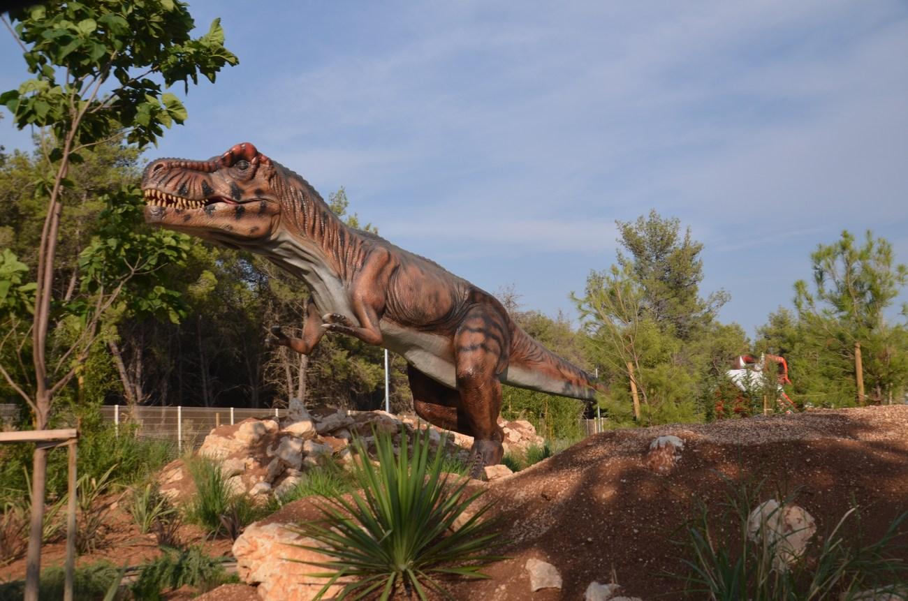 T-rex, velikan med dinozavri.