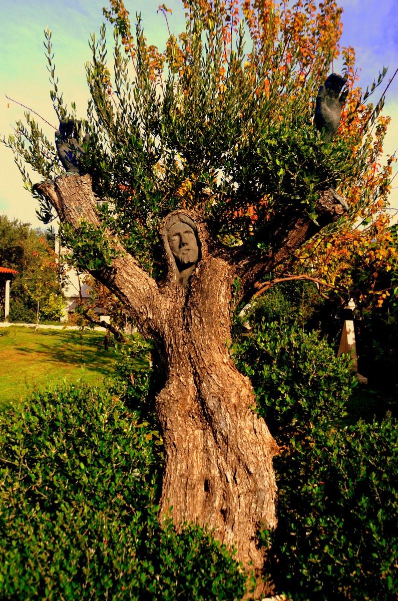 """Galerija, Jezus v """"drevesu"""""""
