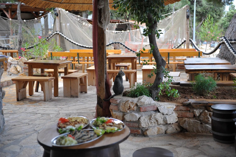 V ribarnici kampa Šimuni boste vsak dan našli sveže ribe, školjke in morske sadeže iz globin Jadrana.