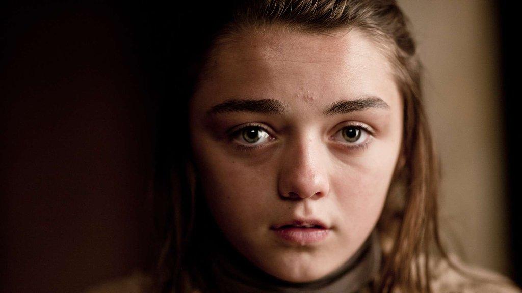 Arya Stark_hisa_stark