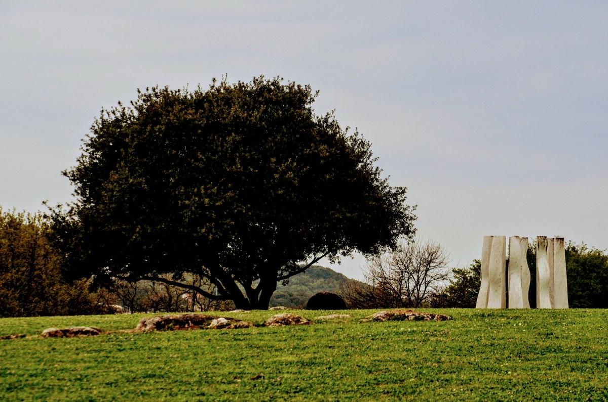 Drevo in skulptura