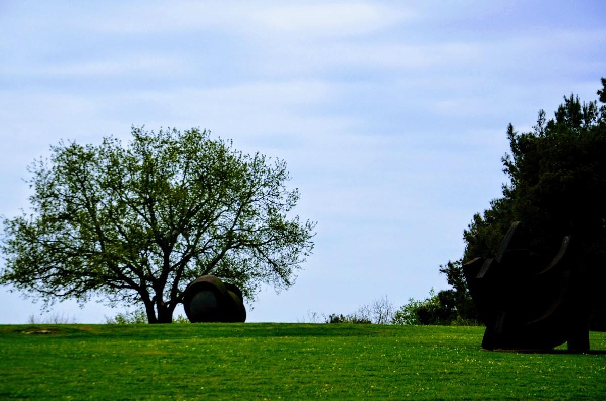 Park Dušana Džamonje