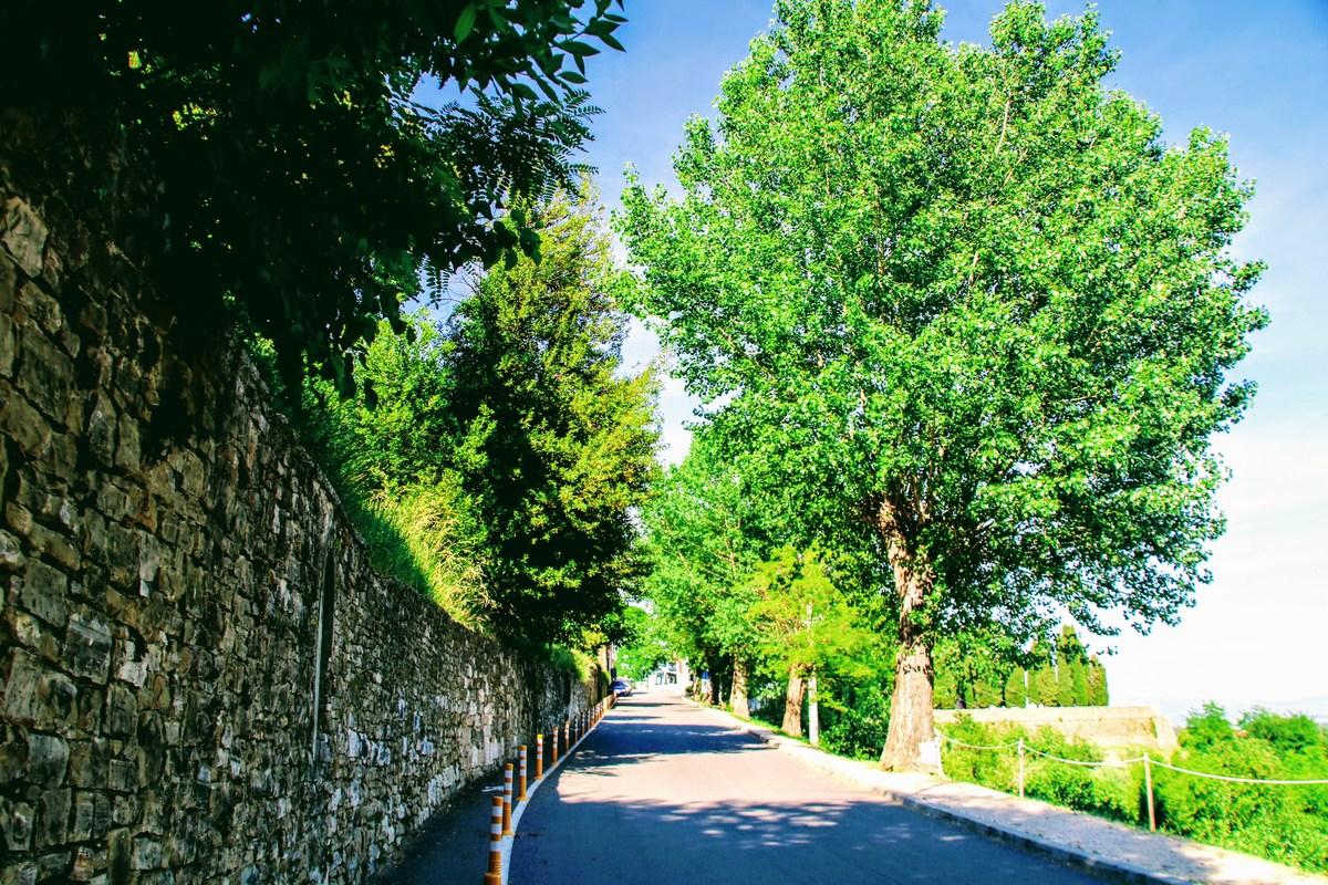 Po cesti v Motovun