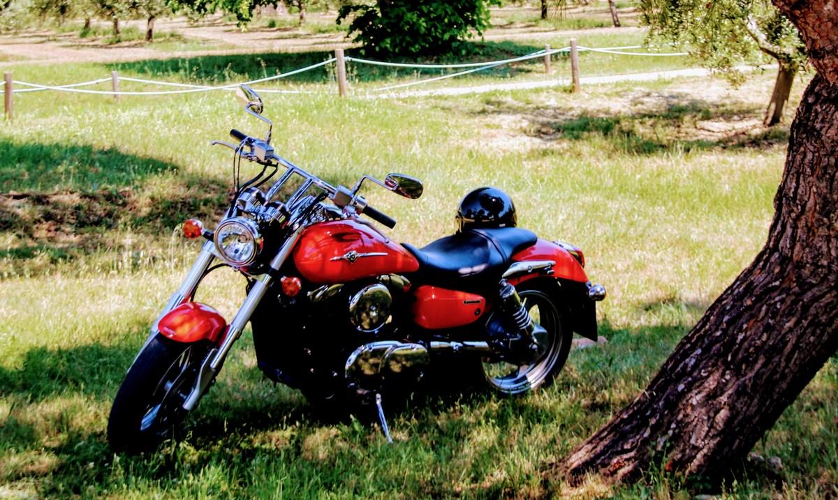 Z motorjem v Novigrad