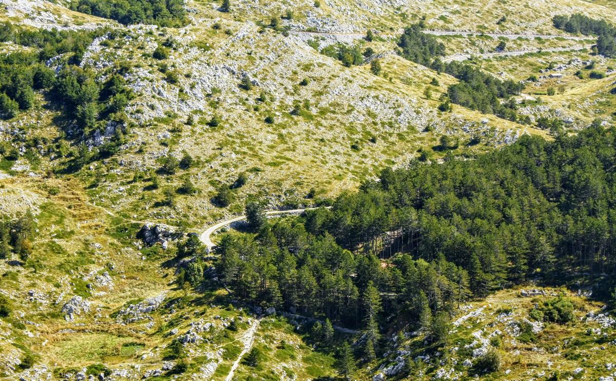 Pogled nazaj, tam nekje v gozdu imamo parkiran avto.