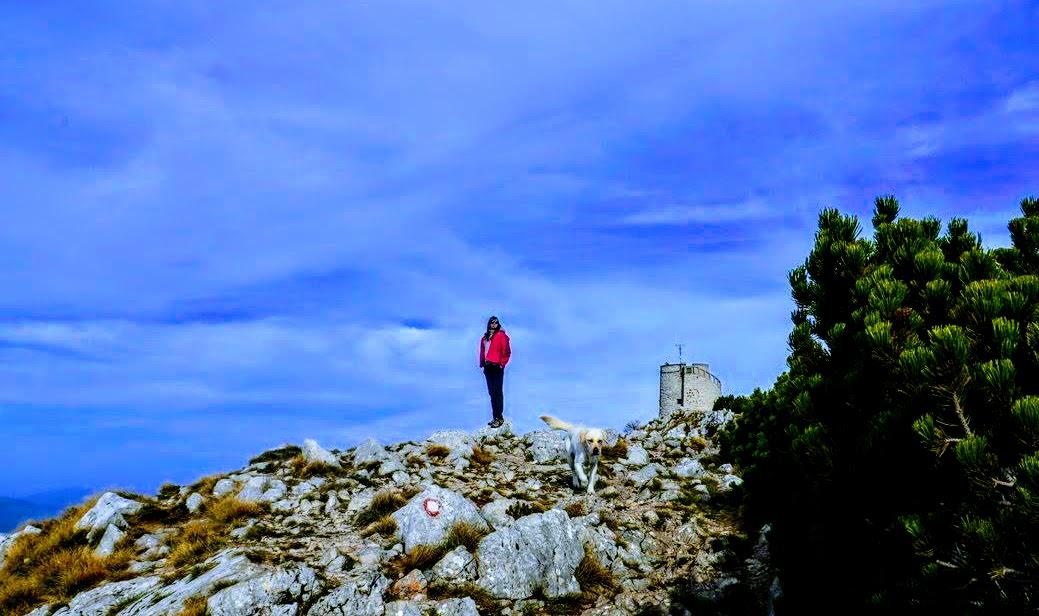 Ženska in stolp