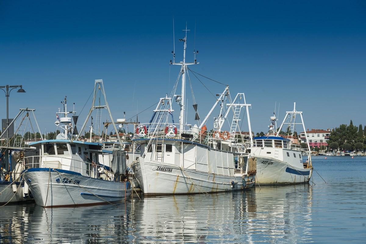 Ribiške ladje