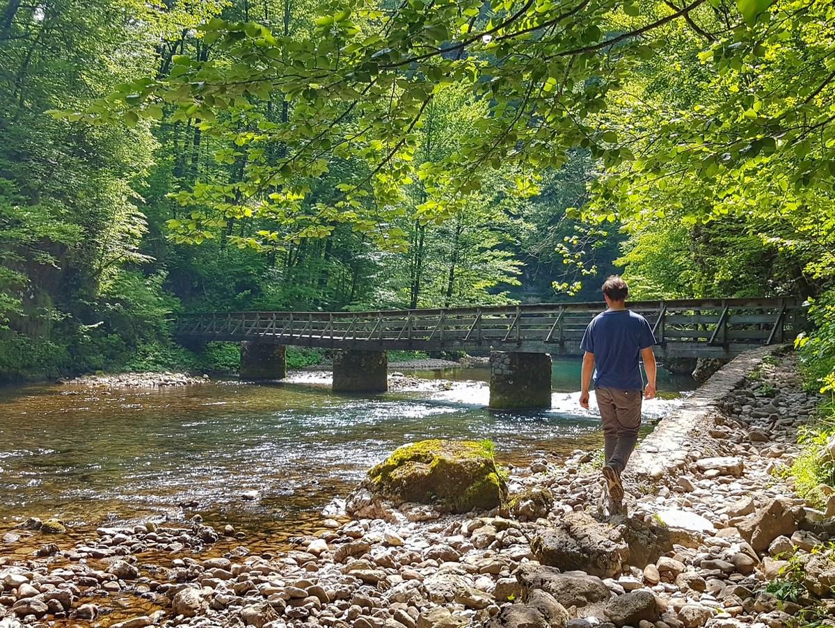 Sprehod ob reki