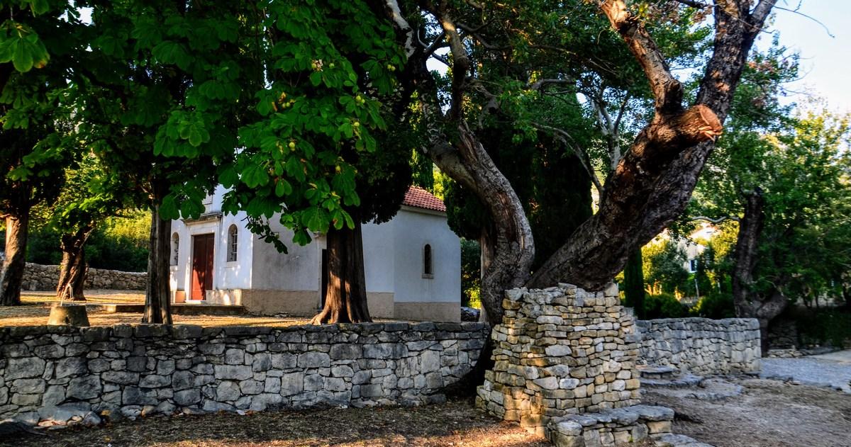 Cerkev in drevo
