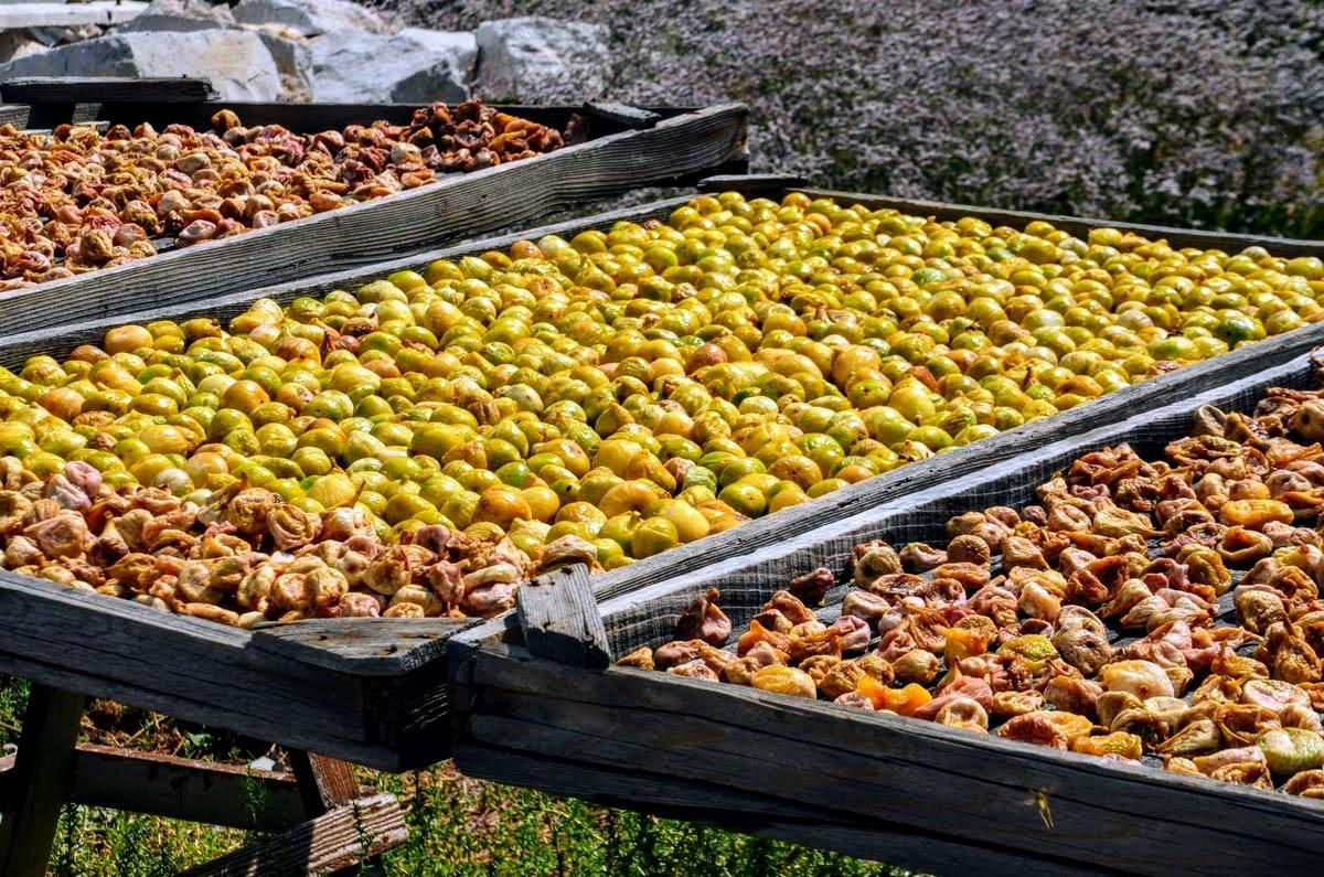 Sušenje sadja