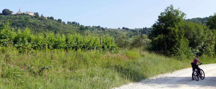 Blag hribček do priključitve na Parenzano