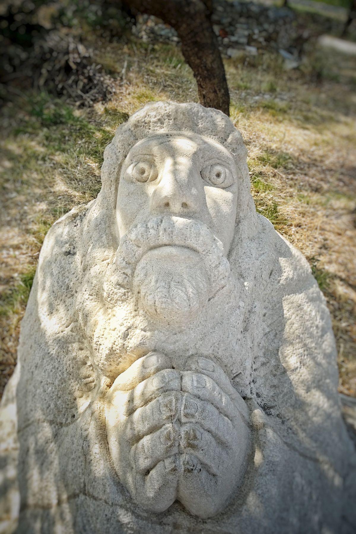 Kip te gleda