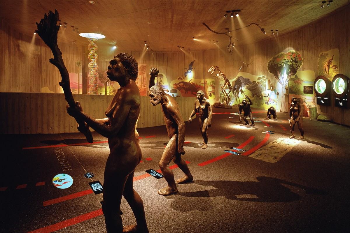 Muzej krapinskih neandertalcev
