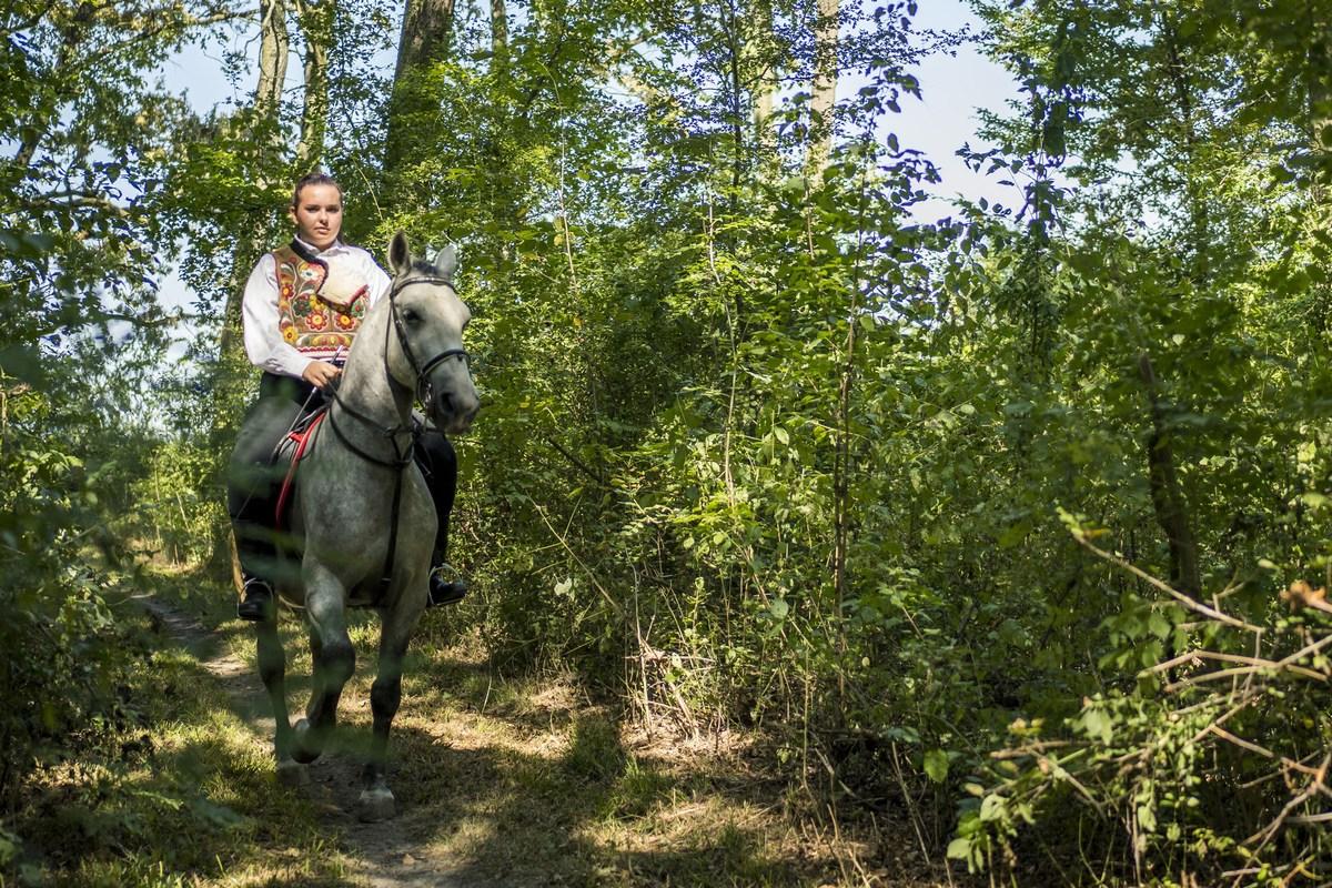 Konjički_turizam, LAG Bosutski niz