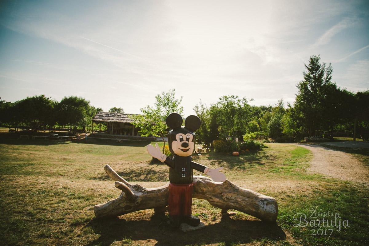 Miki Miška v Feštinskem kraljestvu