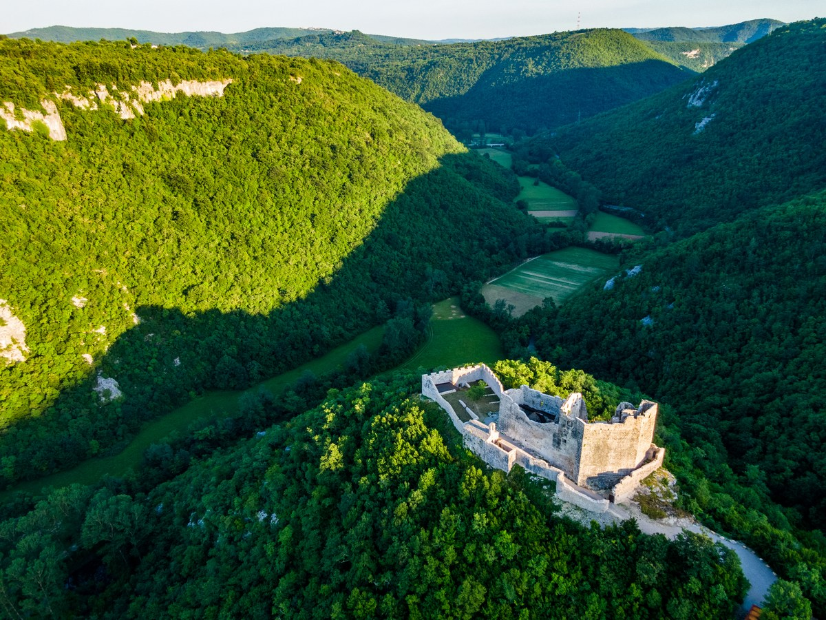 Petrapilosa, Kosmata trdnjava