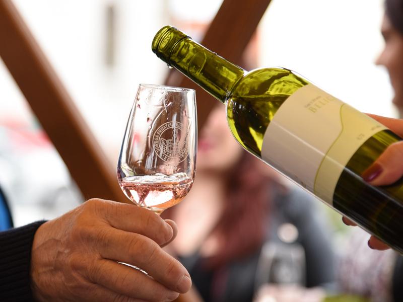 Vinsko srečanje, foto Damir Zamaklar
