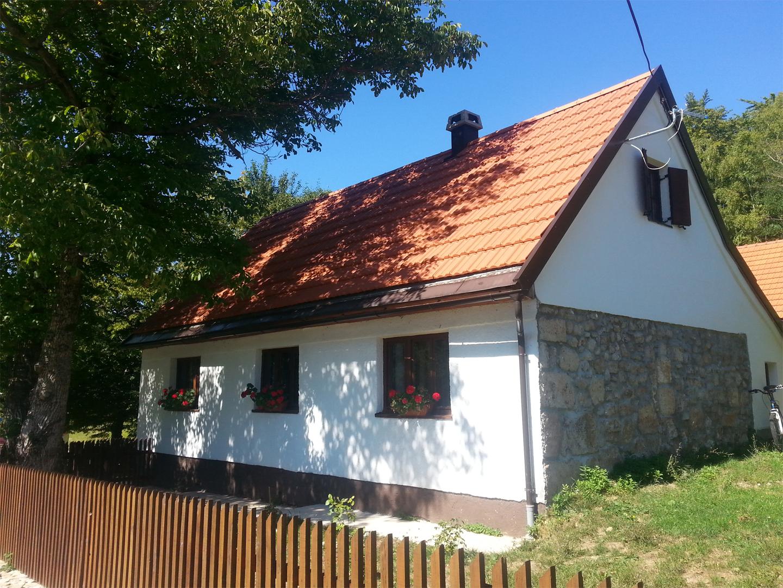 Didova hiša