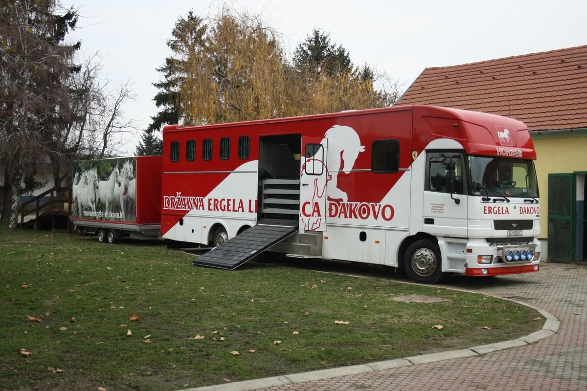 Prevoz konj