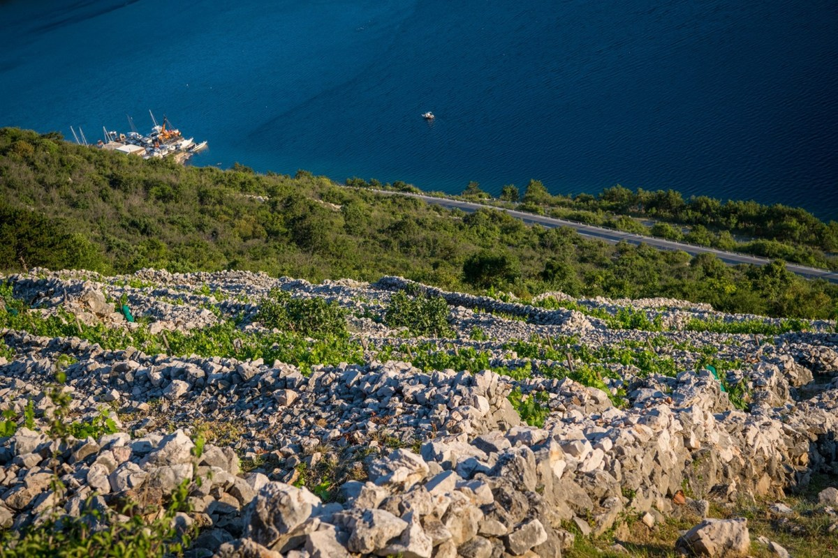 Takala, pogled proti morju, foto Creative Media
