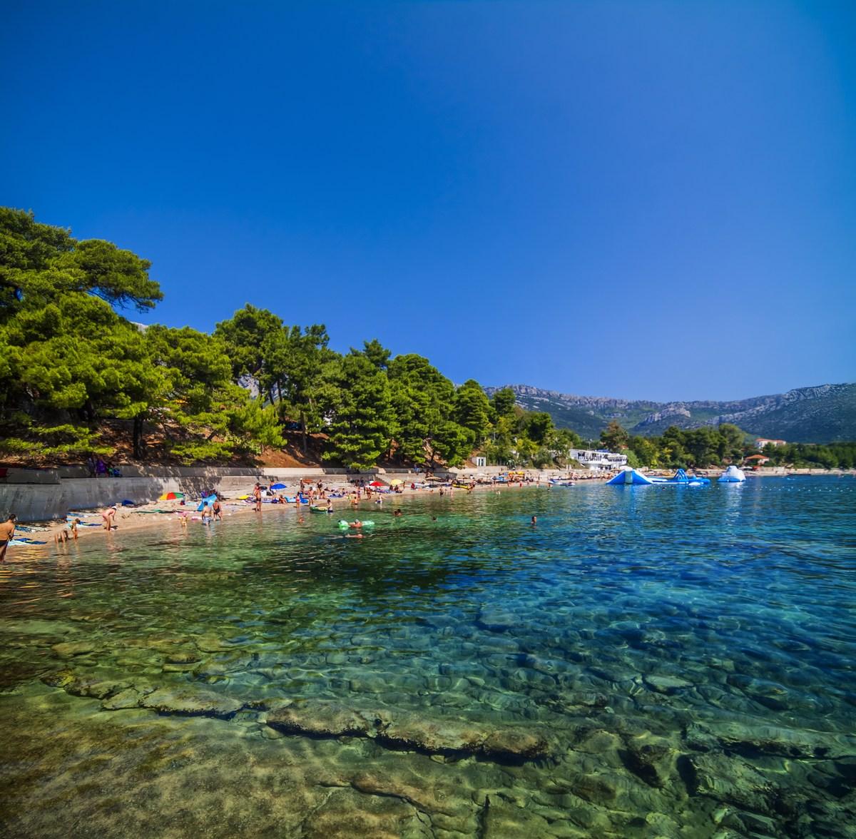 Borovci na plaži
