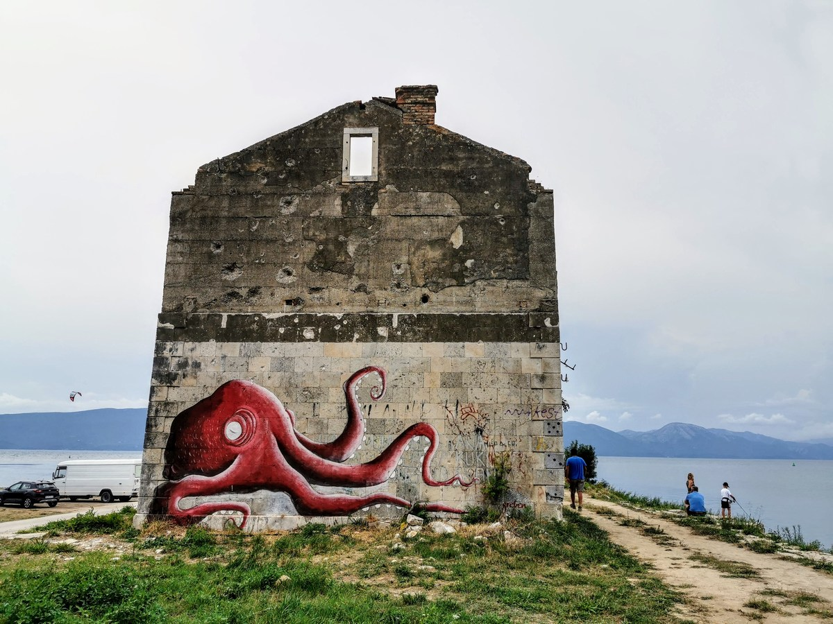 Rdeča hobotnica