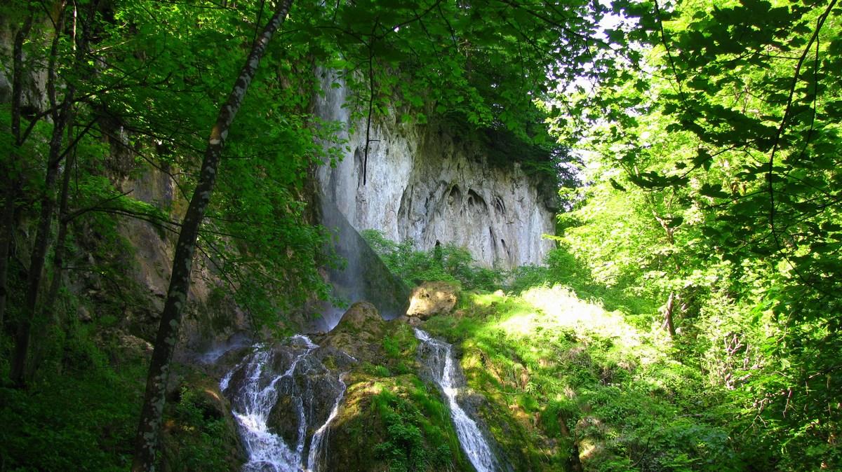 Na sprehodu v Jankovcu