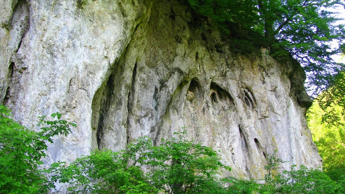 Pogledi na skale, Jankovac