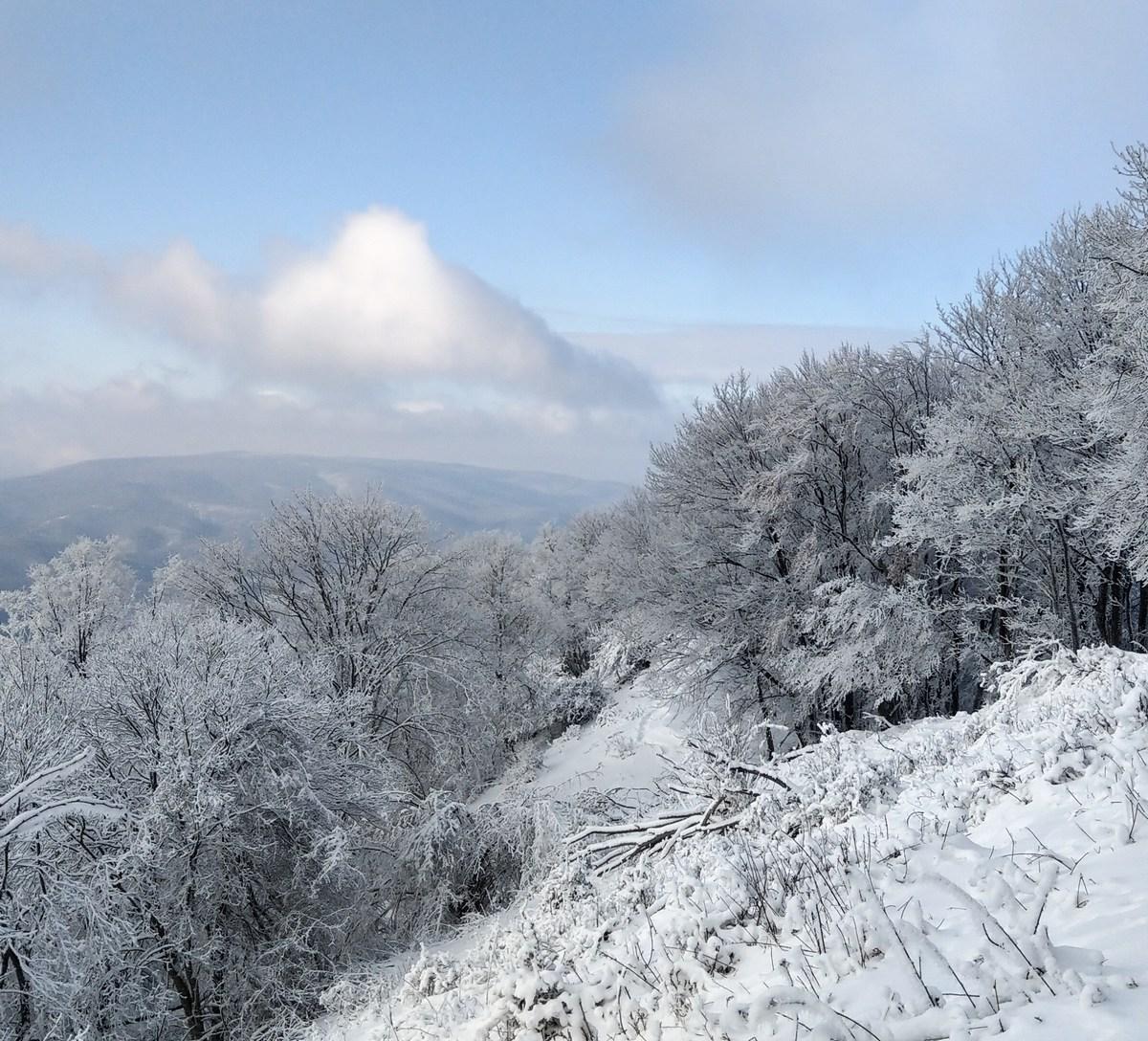 Zimska panorama