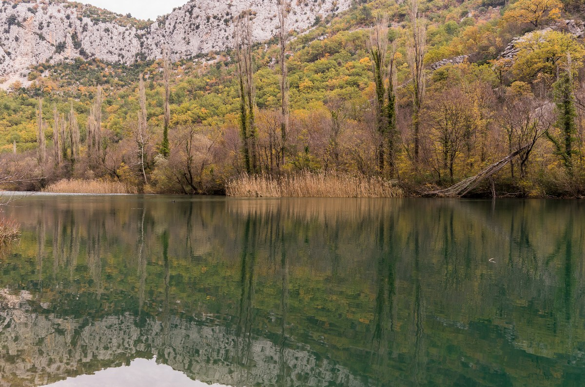 Branka Dominis Mišić; reka Cetina_3