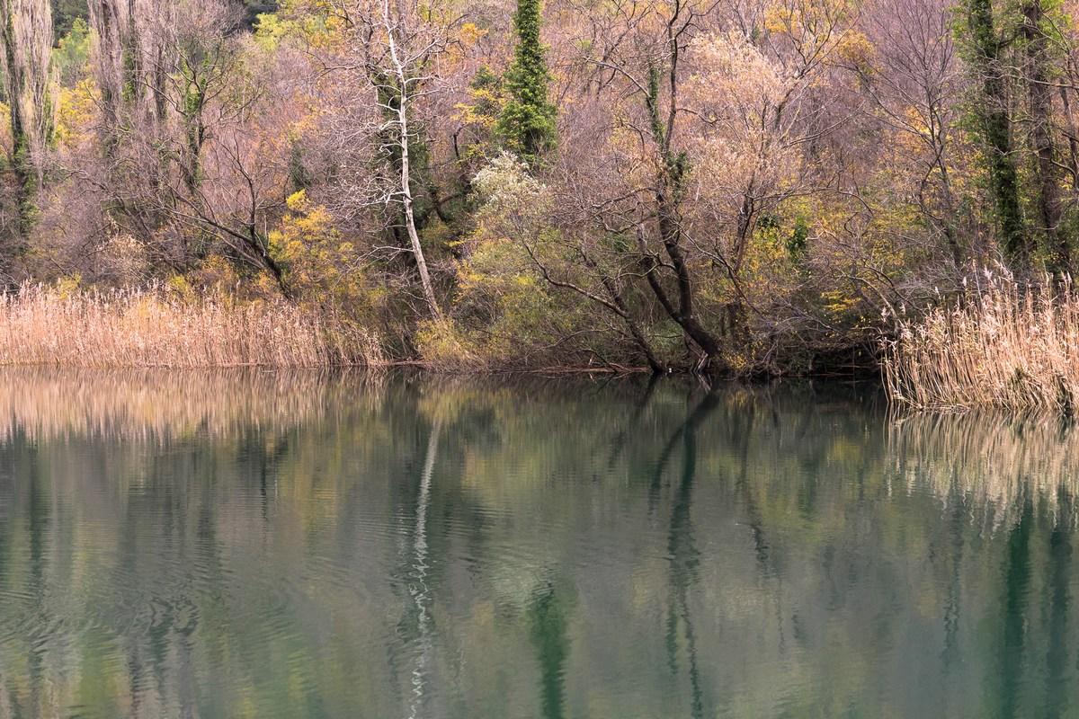 Branka Dominis Mišić, reka Cetina_4